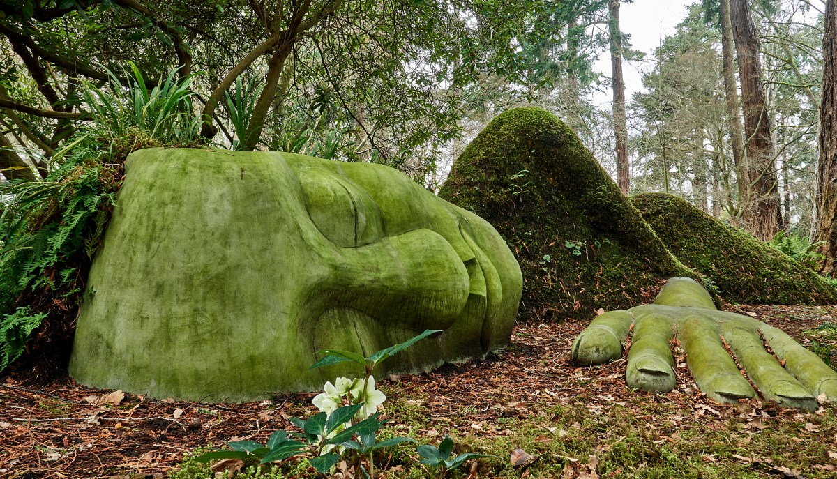 The moss lady - Beacon Hill Park