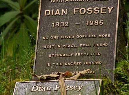 Dian Fossey's grave maker at Karisoke, Virunga NP, Virunga Mountains, Rwanda