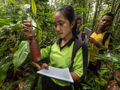 environmental education in West Kalimantan Borneo