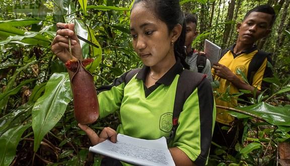 environmental education in West Kalimantan Borneo