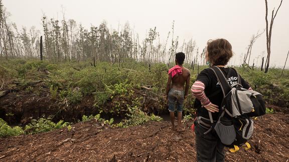 IAR staff search for orangutan after peatland fires, West Kalimantan Borneo