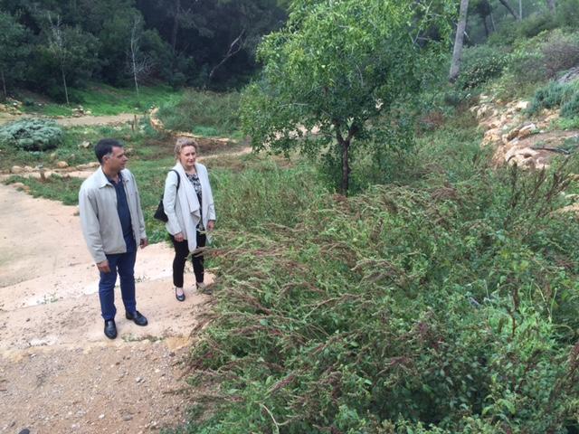 """El PP denuncia que """"el Arboretum del Vedat carece de mantenimiento"""""""