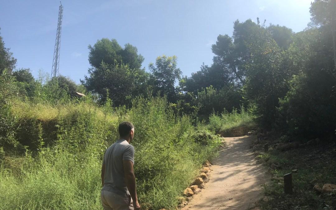 El PP denuncia el proceso avanzado de degradación que padece el Arboretum del Vedat