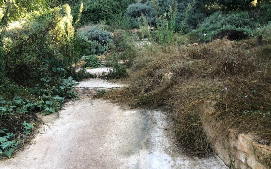 El PP denuncia que en el acto de premios de Viles en Flor aparezcan imágenes del Arboretum en perfecto estado cuando actualmente está abandonado