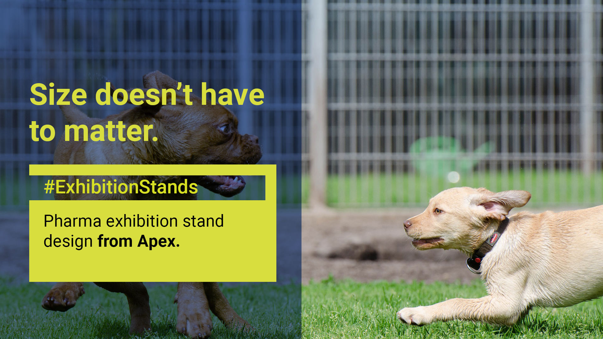 Exhibition Stand Size Doesn T Have To Matter