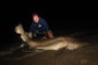 Shark Fishing Improves with PB Sand Tiger (FINS CUT OFF) & Larger Sandbars