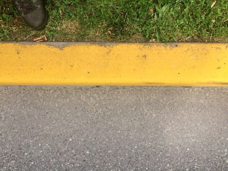 curb line clean from leaf removal