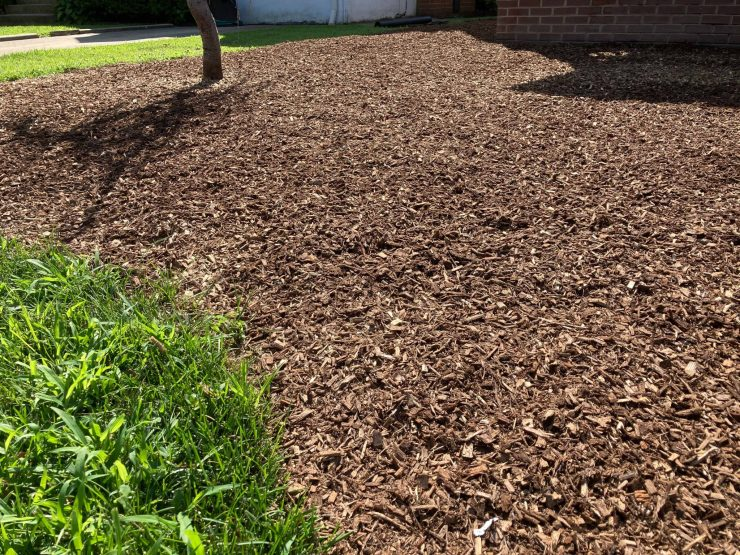 Mulching Wood Chips Garden Beds