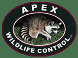 Apex Wildlife Control Memphis TN