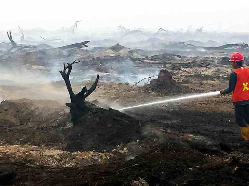 Local fire fighter mopping up peat fire – South Sumatra, Indonesia 2015.