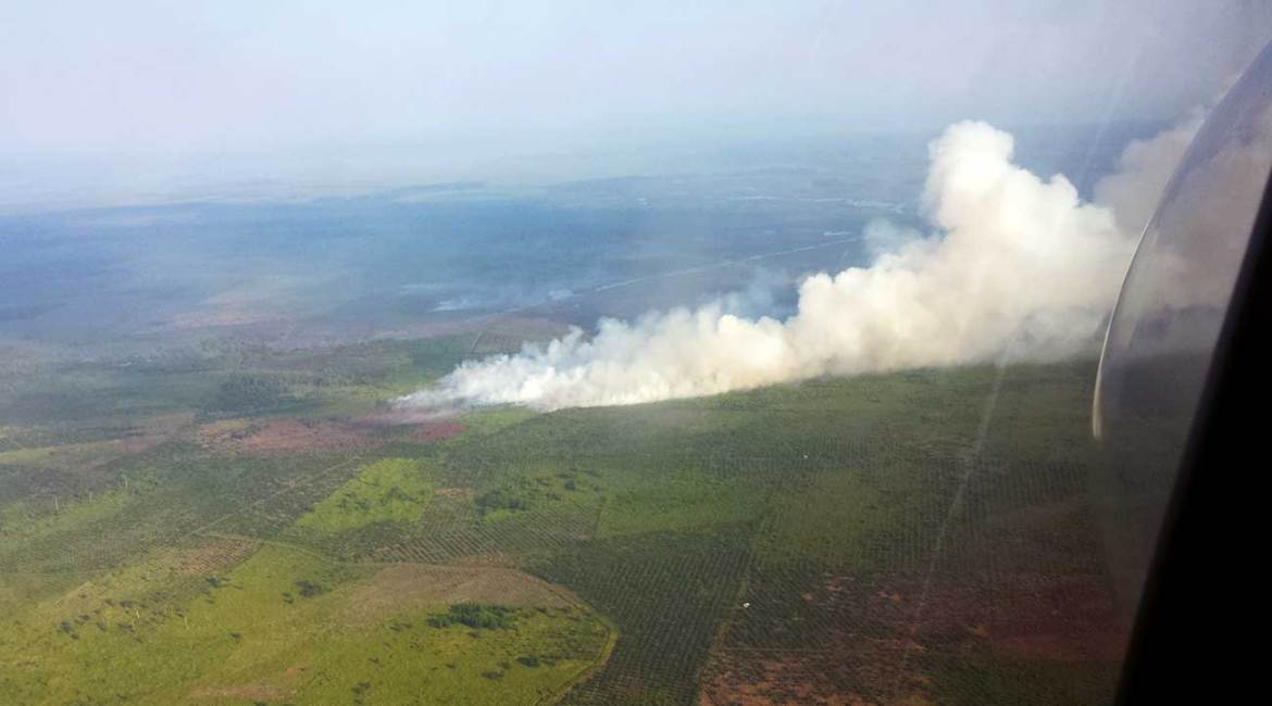 Peatfire under strong winds – Riau, Indonesia 2016.