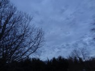 Jan 5 - Sky (from our backyard, 5pm)
