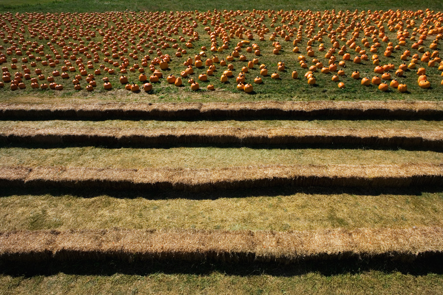 Pumpkins & Haybales © Kathleen Connally
