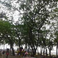 Wisata alternatif- Ke Taman Kota  Monas Bersama Keluarga-