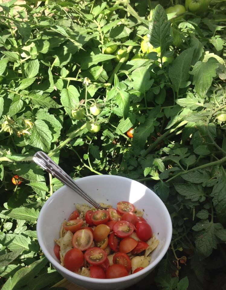 Farm Fresh Foodways