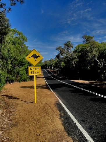 taking to the open road work holiday visa
