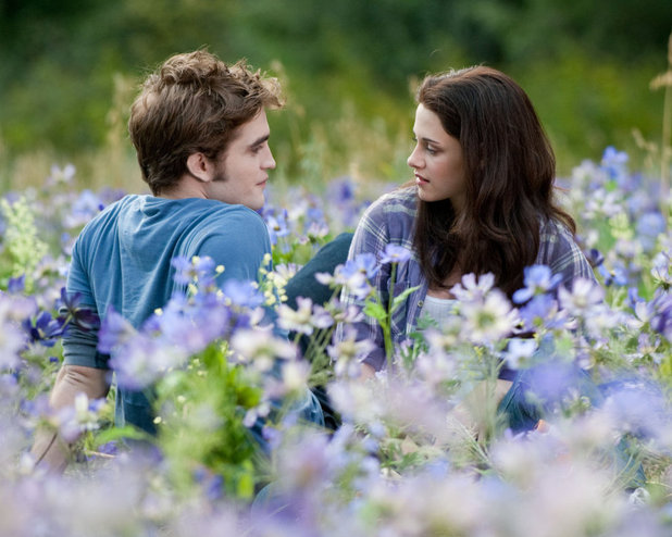 """The Movie """"Twilight"""" Inspires Me to Do A Better Job with Some of My Resolutions."""