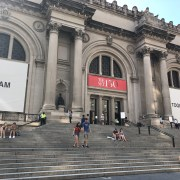 And Now for Some Good News: The Metropolitan Museum Is Open!