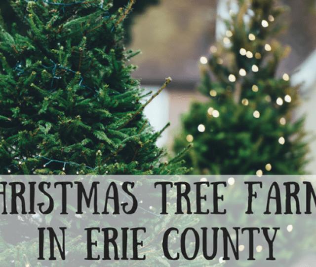 Santa Sightings In Erie  Png
