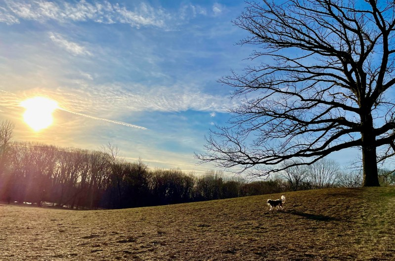Spring Equinox After the Pandemic