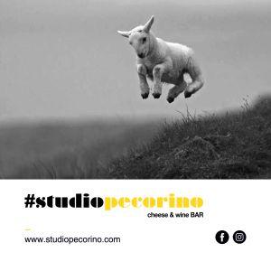 Studio Pecorino