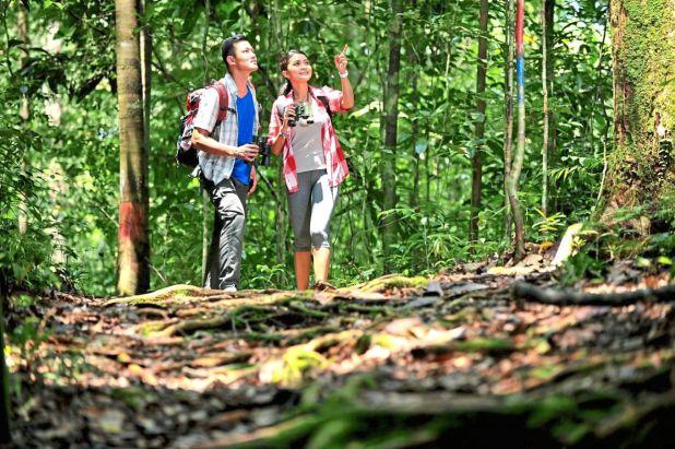 在该国的任何国家公园中进行丛林徒步探险。