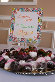 #weddings, #bridalshower, #nywedding, # bridalshowerphotos, #apicturesquememoryphotography, #nyweddingphotographer, #bridalshowerdesserts, #chocolatecoveredstrawberries
