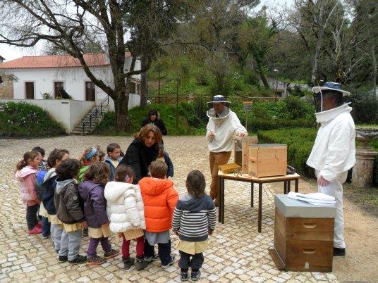 2014.03.25 - Abelhas, Teatro, Percurso (8)