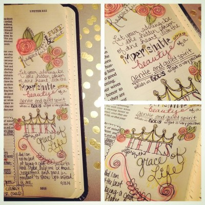 Journaling Bible | Respectable & Pure