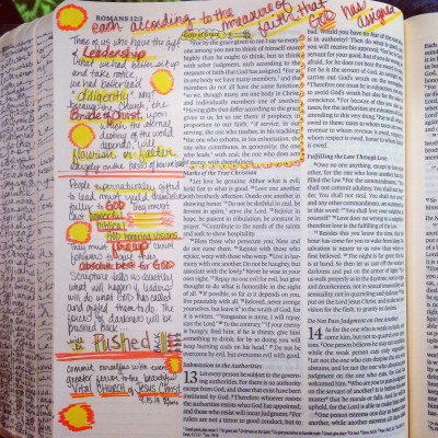Journaling Bible   The Gift of Leadership   apileofashes.com