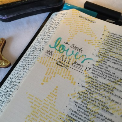 Journaling Bible | Good Friends apileofashes.com
