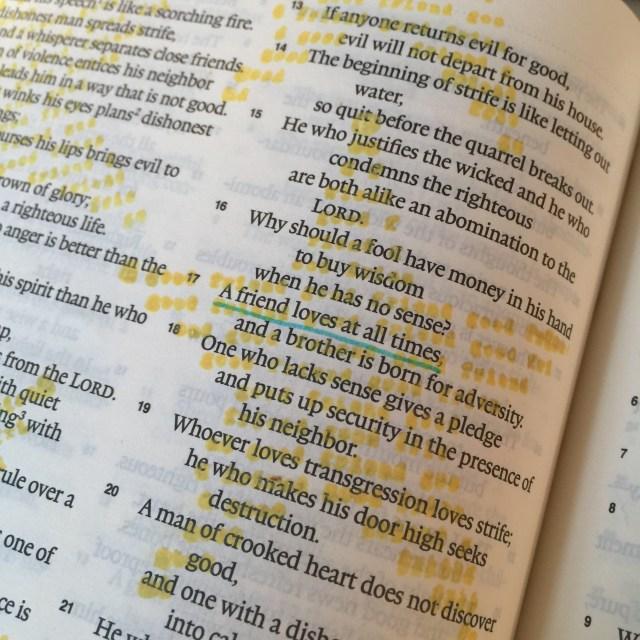 Journaling Bible | Good Friends apileofashes.com