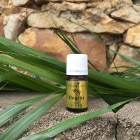 ESSENTIAL OILS & GOD'S WORD | ONYCHA