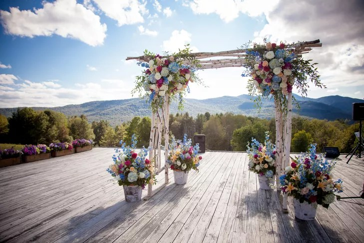 Natural Birch Branch Wedding Arch