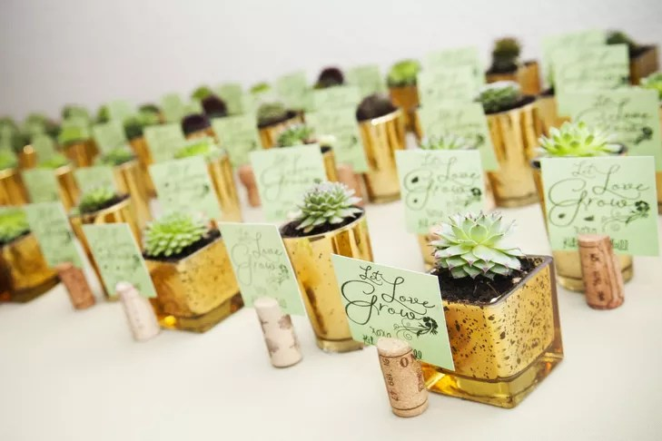 Succulent And Wine Cork Escort Card Favors