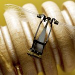 robot abeille robobee harvard insect greenpeace