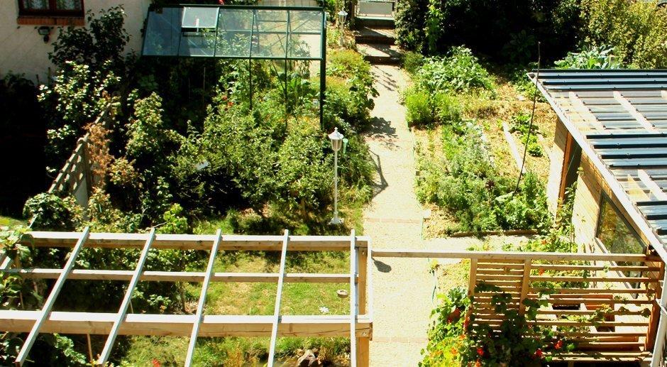 Joseph récolte 300kg de légumes par an dans son petit jardin de ville