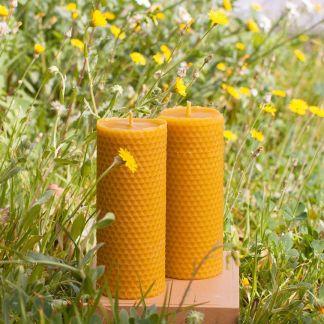 bougies pillier en cire d'abeille - Apis Cera