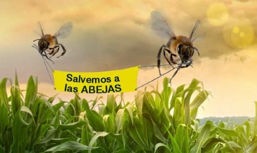 declive abejas