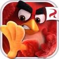 Angry Birds Action v2.3.0 [Mega Mod] [Latest]