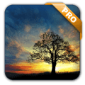 Sunset Hill Pro Live Wallpaper v1.6.3 [Latest]