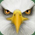 Ultimate Bird Simulator v1.2 [Latest]