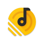 Pixel+  Music Player v4.2.5 APK Patched