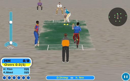 Beach Cricket 2.5.5 screenshots 5