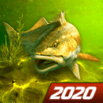 My Fishing World Realistica pesca v 1.11.89 Mod APK