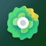 Moxy Icons V 7.2 APK Patched