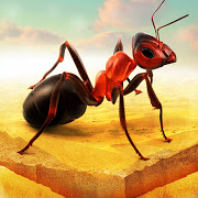 Little Ant Colony Idle Game