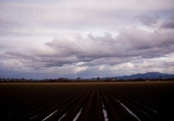 Storm clouds roll across the dark fields of Salinas Valley, California