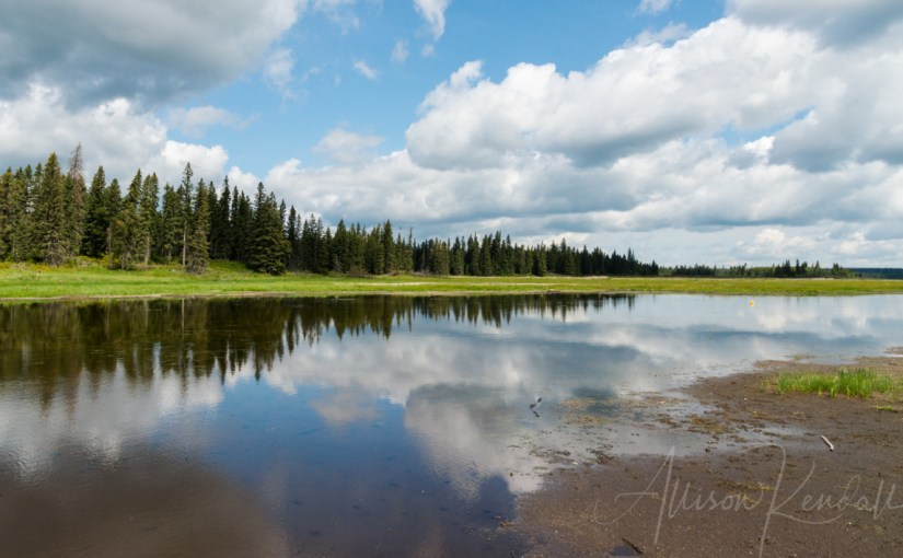 Summer Reflections | Riding Mountain National Park, Canada