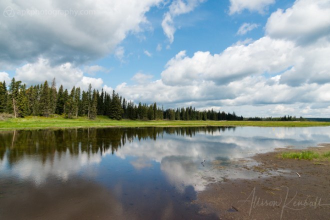 Bright blue summer sky and fluffy clouds reflected in the water of Whirlpool Lake at Riding Mountain, National Park, Canada